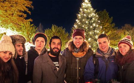 Vienna: Christmas Market Tour