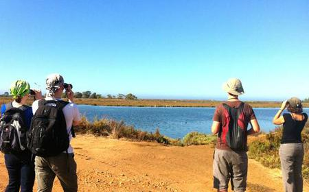 3-Hour Guided Walking Tour: Ria Formosa Nature Trail