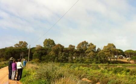 Rio Formosa Nature Park: 3-Hour Guided Walking Tour