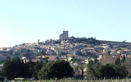 History, Wine and Chocolate Tour in Provence