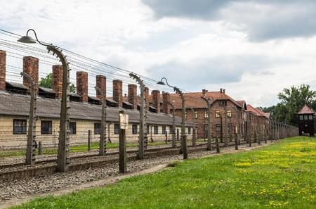 Auschwitz-Birkenau Guided Tour from Krakow with Private Transfers