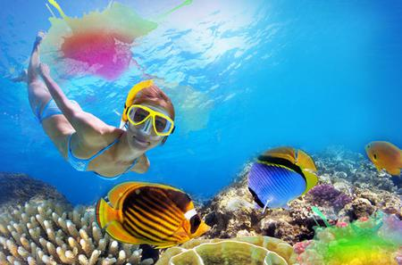 Unlimited Snorkeling and Beach Break with Lunch in Cozumel