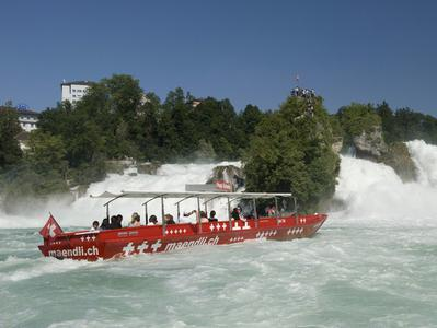 Excursion to the Rhine Falls + The Best of Zurich City Tour