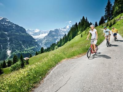 Grindelwald and Interlaken Mountain Resorts Tour from Zurich