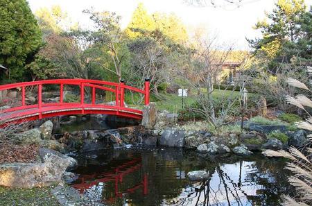 Hobart Flora and Fauna Tour Including the Royal Botanical Gardens