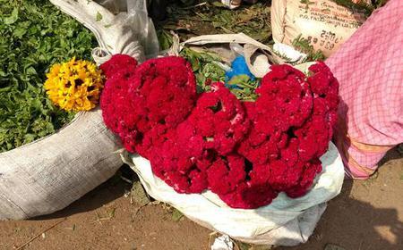Kolkata: Half-Day Morning Tour w/ Flower Market