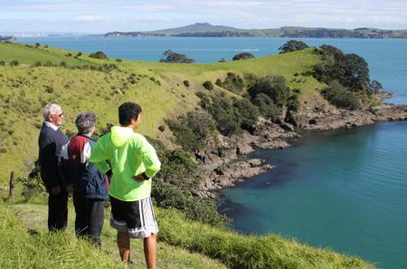 Maori Walking Tour with Wine Tasting on Waiheke Island