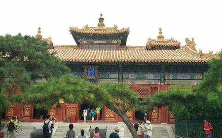 Beijing: Hutongs, Lama Temple, Pandas and Bird's Nest