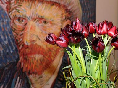 Van Gogh Museum Skip the Line Ticket and Amsterdam Canal Bus Hop On Hop Off Cruise