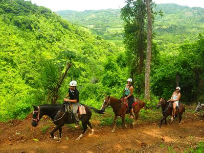 Horseback Riding to La Fortuna Waterfalls from Arenal