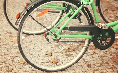 Florence: 2 Hours Bike Tour