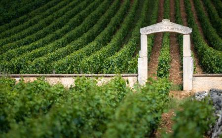 Luxury Private Tours in the Burgundy Vineyards