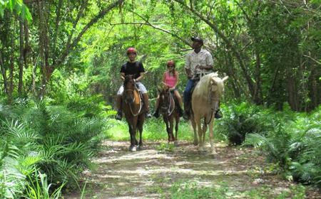 Cap Cana: Countryside Horseback Riding in Scape Park