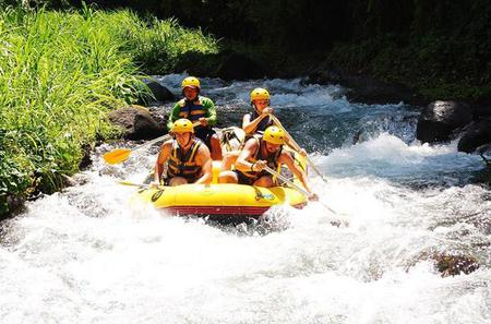 White Water Rafting and Coffee Plantation Tour in Bali