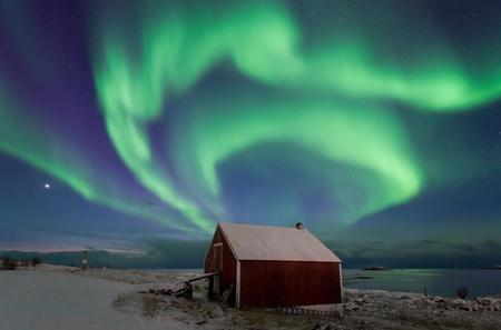 The Northern Lights Hunting Tour Incl Snacks On Campfire From Rovaniemi