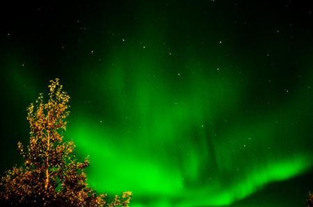 Northern Lights Hunt Including Snacks on Campfire from Rovaniemi
