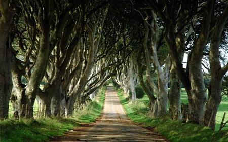 Game of Thrones: Full-Day Guided Bus Tour