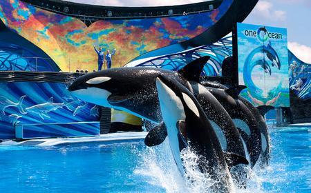 SeaWorld San Diego: 1-Day Ticket and Dine with Shamu