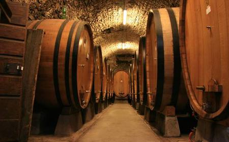 Siena: 2-Hour Wine Tasting & Lunch at the Winery