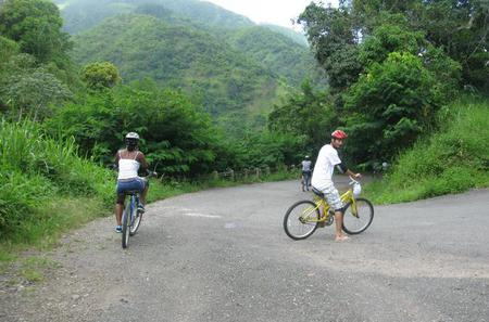 Blue Mountain Bicycle Tour from Kingston
