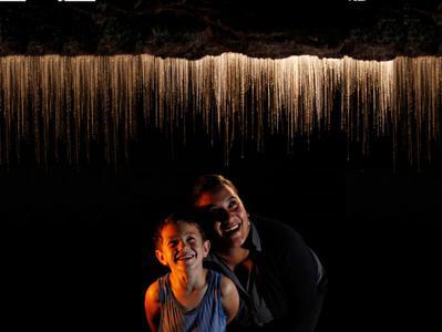 Auckland to Rotorua One Way Coach Trip with Waitomo Glowworm Caves Tour