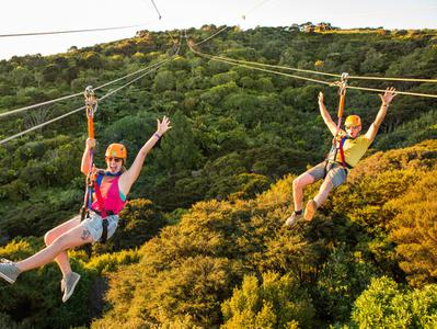 Waiheke Island Zipline Experience and Wine Tasting with Lunch from Auckland