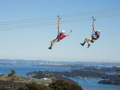 Waiheke Zipline Experience with Island Tour from Auckland