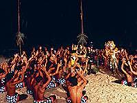 Bali Sanghyang Kecak Fire Trance and Monkey Dances - Private Tour