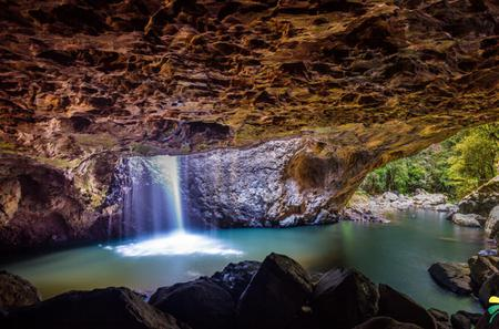 Springbrook Natural Arch and Bush Tucker Tasting Day Trip from the Gold Coast