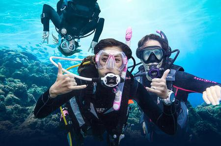 PADI Beginner Diving Course in Grand Bay