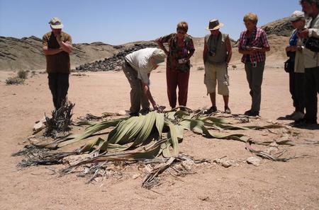 Namib Desert Tour from Swakopmund