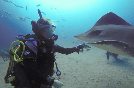PADI Fish Identification Specialty Course in Tenerife