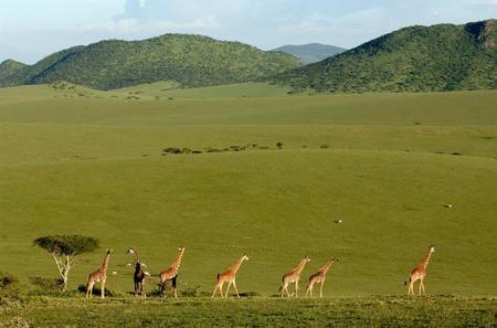 3-Day Maasai Mara Safari Guided Tour from Mombasa