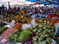 Turgutreis Market Half Day Tour