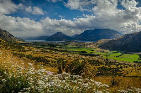 Private Tour: Half-Day Queenstown and Beyond Photography Tour