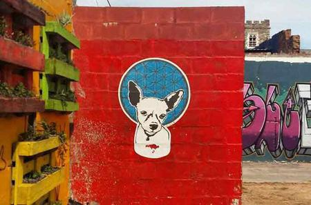 Township Tour and Street Art Walking Tour in Cape Town