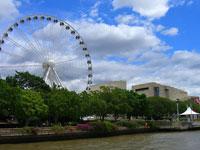 Brisbane City Tour with Cruise