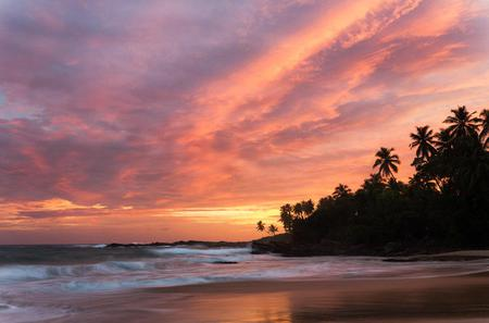 Private Day Trip: Explore Bentota from Colombo