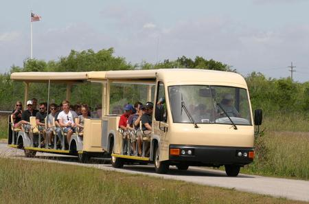 Shark Valley Everglades Guided Tram Tour