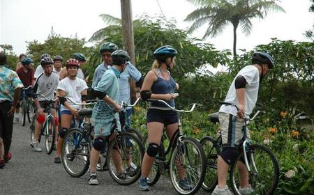 Blue Mountains 3-Hour Downhill Bicycle Tour