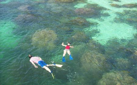 Tunku Abdul Rahman Marine Park Snorkeling Trip