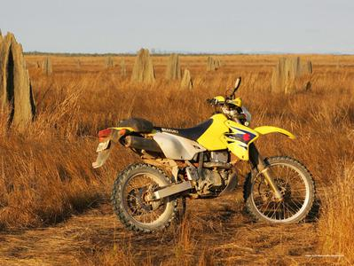 Cape York Motorcycle Adventure with Lunch at Mt. Molloy Hotel