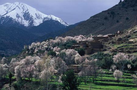 Atlas Mountains and 4 Valleys Guided Private Day Tour from Marrakech