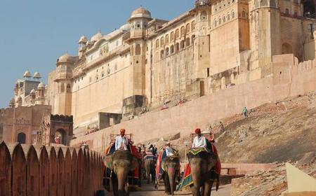 3/4 Days Golden Triangle Tour With Private Car & Driver