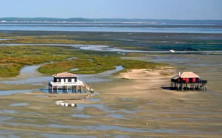 Bordeaux: Arcachon, Dune du Pyla & Cap Ferret Day Tour