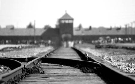 From Krakow: Full-Day Auschwitz-Birkenau Guided Tour