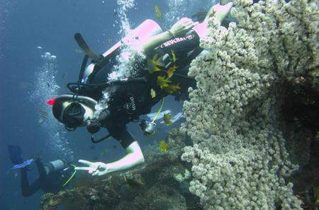 2-Day PADI Advanced Open Water Dive Course in Bali