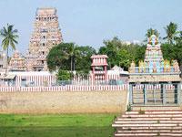 Chennai Sightseeing with Kapaleeshwarar Temple Kalakshetra and Marina Beach - Full Day Private Tour