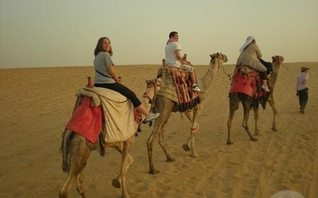 Giza Pyramids Horse and Camel Private Desert Ride