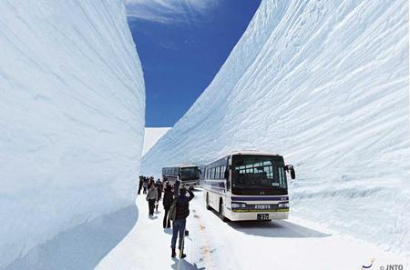 2-Day Tateyama Kurobe Alpine Route, Shirakawago and Hida-Takayama Bus Tour from Nagoya